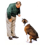 hombre-hablando-a-un-perro