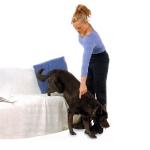 mujer-dando-orden-baja-a-un-perro