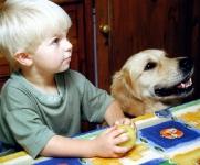 nino-y-perro-en-la-mesa