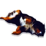perro-tumbado.png
