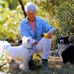 dando agua a dos perros