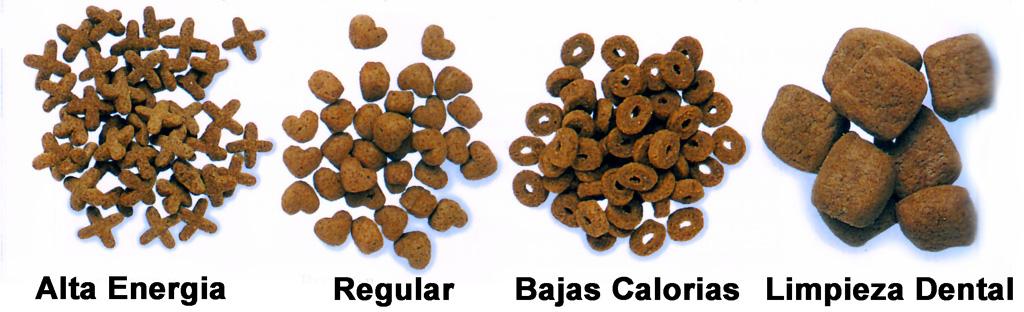 Tipos de Alimentos Secos para Perros
