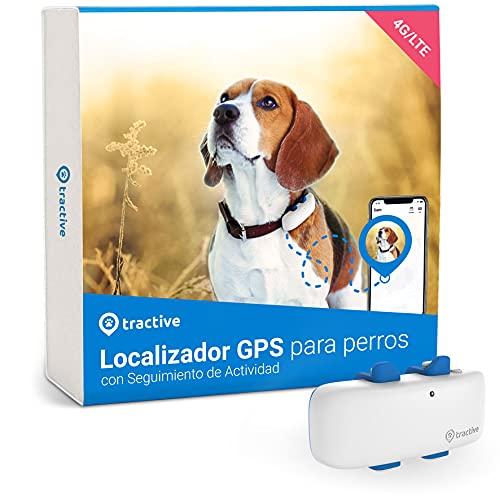 Tractive Collar GPS Perros (2021). Conoce Siempre la ubicación de tu Perro. Localización y Seguimiento de Actividad Las 24 h