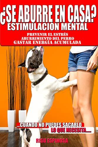 ¿se aburre en casa? Estimulacion mental: para prevenir estrés, aburrimiento del perro, gastar energía acumulada , equilibrio emocional cuando no puedes sacarlo lo que necesita