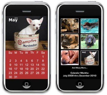 perros-gatos-iphone