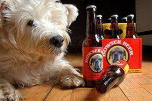 Cervezas para perros