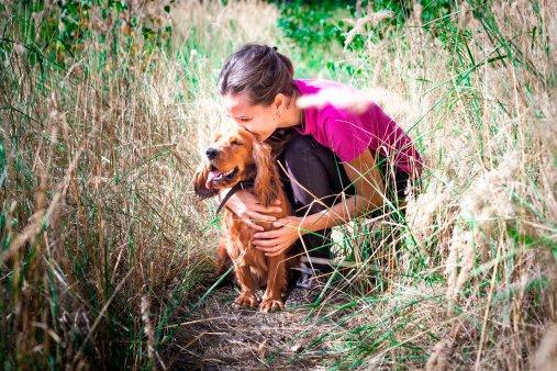 cocker spaniel ingles razas de perros pequeños y cariñosos