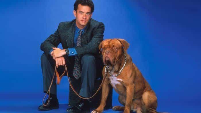 fotografía promocional de la película perros y sabuesos