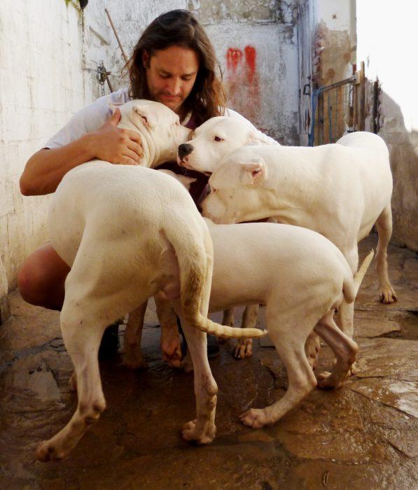 criador de dogos argentinos