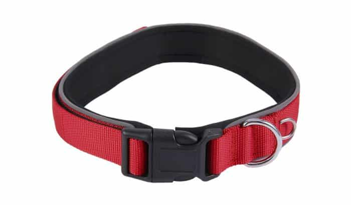 collar acolchado para perros technical pet