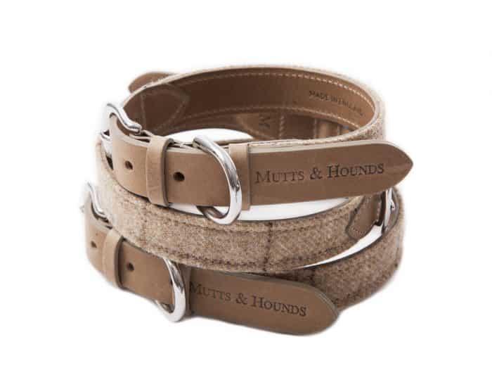 collares de cuero o piel para perros