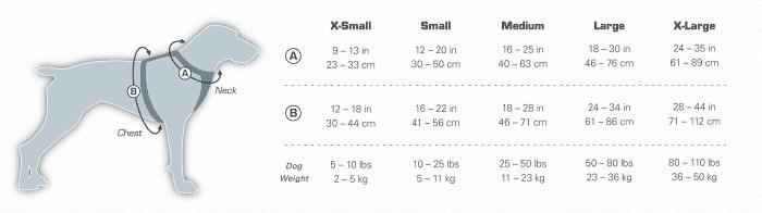 medidas de los collares para perros segun su tamano