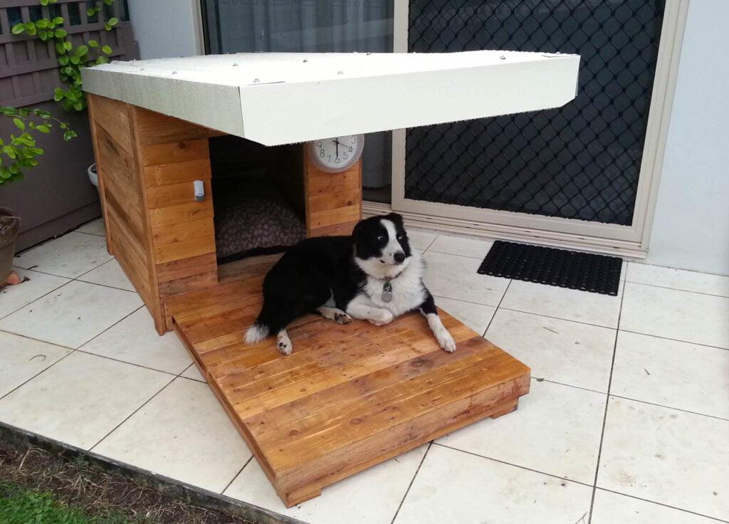 caseta para perros con cornisa