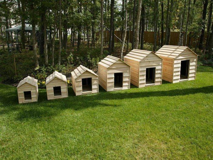casetas para perros de distintos tamaños