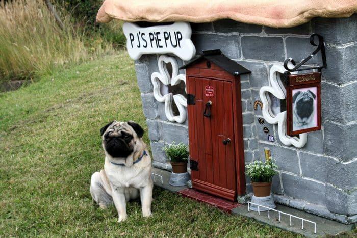 como decorar una caseta de perro