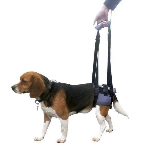arnes para perros patas traseras