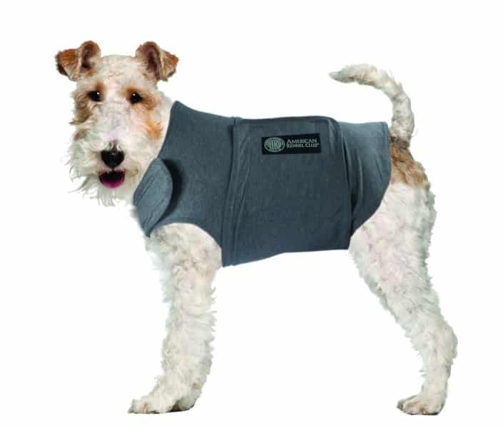 camisetas refrescantes para perros