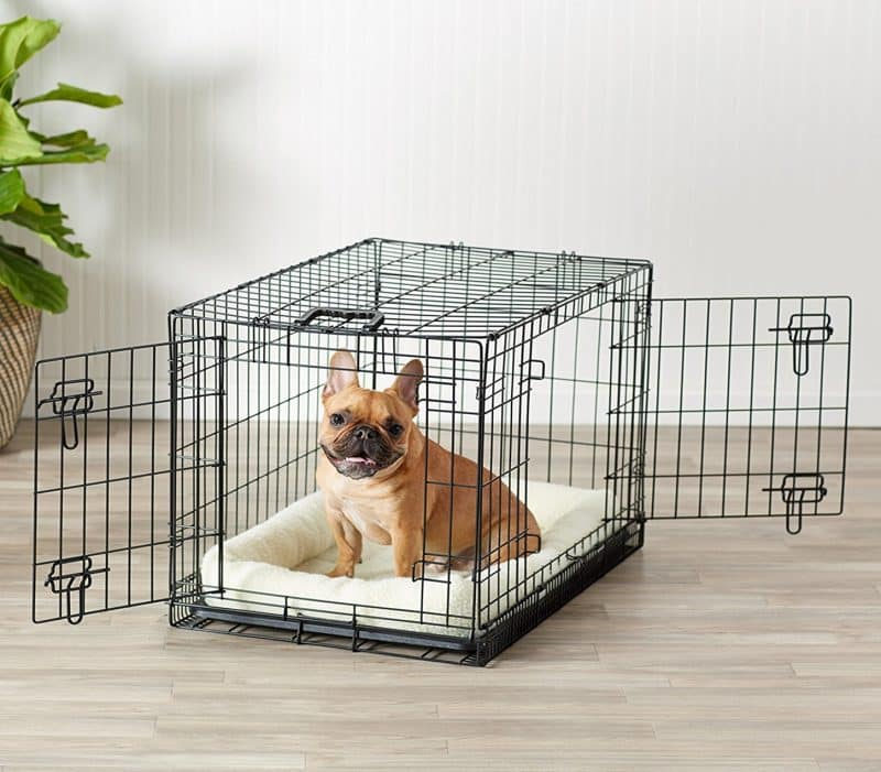 cómo acondicionar una jaula para perros