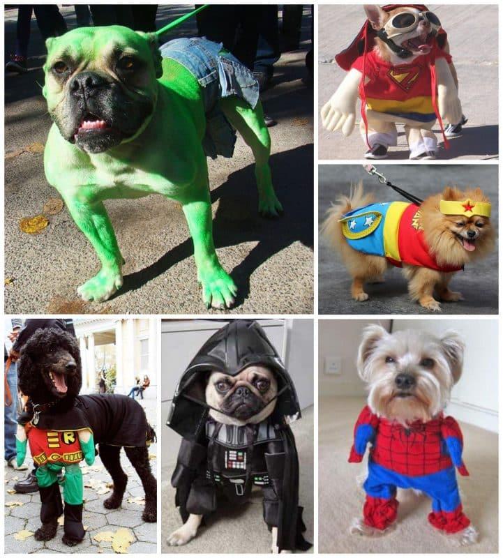 disfraces de superhéroes para perros