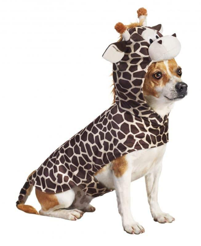disfraz de jirafa para perros