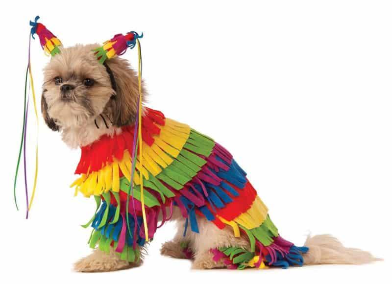 disfraz de piñata para perros