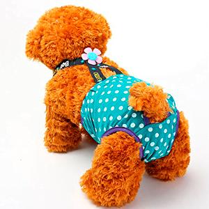 Mejores pañales para perros que puedes comprar online
